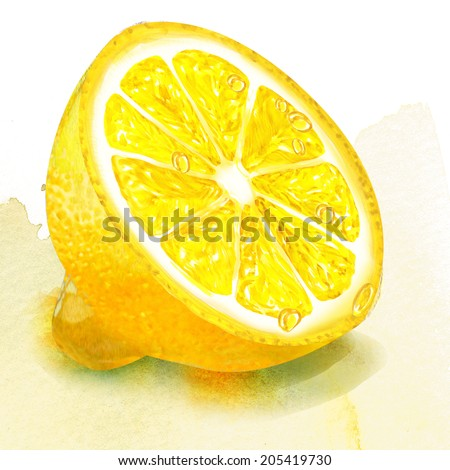 half of lemon. watercolor painting on white background - stock photo