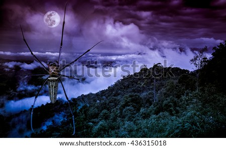 Halloween background. Closeup spider on spiderweb and fresh green nature against beautiful sky and full moon at nighttime. The moon taken with my own camera, no NASA images used. - stock photo