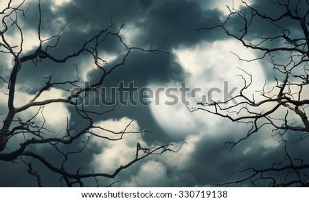 Halloween background with dark forest, sky and moon  - stock photo