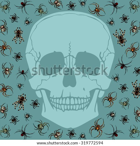 Halloween card with skull silhouette and spiders - stock photo