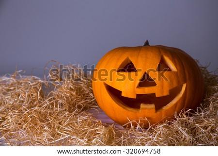 Halloween concept - big pumpkin Jack-O-Lantern over grey background - stock photo