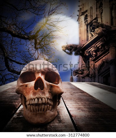 Halloween concept, zombie skull rising out from the wood coffin. - stock photo