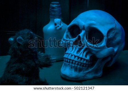 Halloween image with a skull, a rat and a bottle of poison in the dark