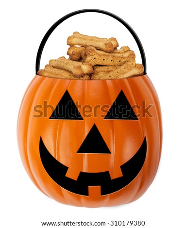 Halloween jack-o-lantern pumpkin shaped bucket filled with cone shaped dog biscuit treats - stock photo
