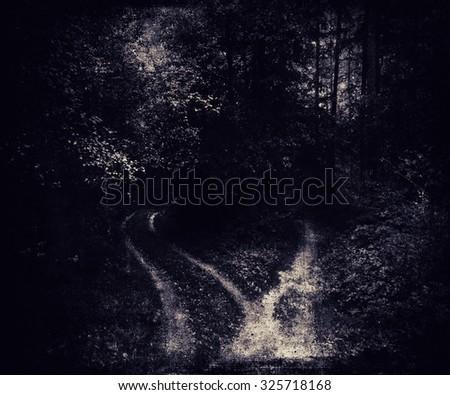 Halloween Landscape, Dark Night In A Forest - stock photo