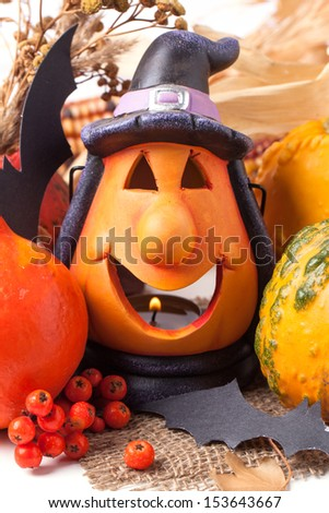 Halloween lantern with autumn berries and pumpkins over white