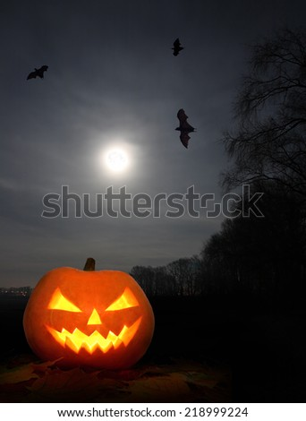 Halloween pumpkin at night in the bright moonlight