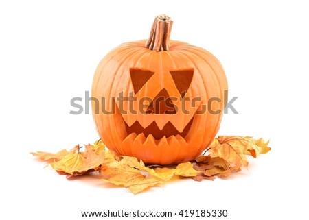 Halloween pumpkin. Halloween pumpkin and autumn leaves. Halloween pumpkin isolated on white background. Halloween pumpkin.Halloween pumpkin face.  Orange Halloween pumpkin. Lantern halloween pumpkin.  - stock photo