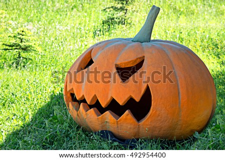 Halloween Pumpkin in a clearing