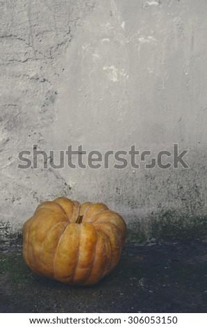 Halloween pumpkin in front of grunge wall - stock photo