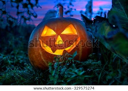 Halloween pumpkin in the garden at night. - stock photo