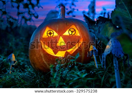 Halloween pumpkin in the garden at night with the eyes of the gears of the clock between the fabulous fungi. - stock photo