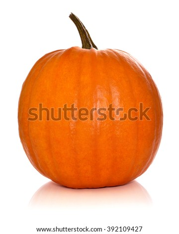 Halloween pumpkin, isolated on white.