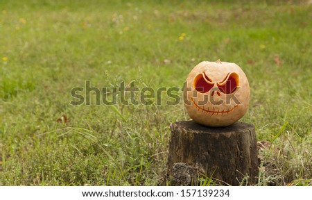Halloween pumpkin on a wooden stump surrounded by green grass - stock photo