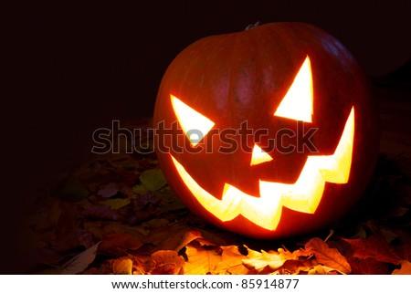Halloween Pumpkin on autumn leaves - stock photo