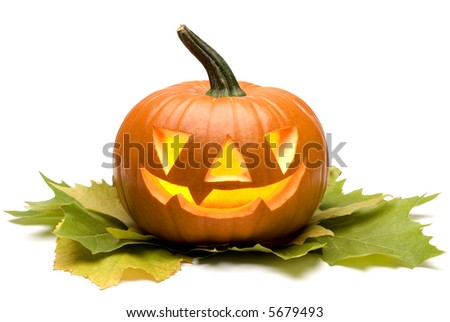 halloween pumpkin on leaves close up on white - stock photo