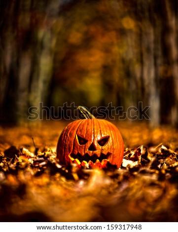 Halloween pumpkin on leaves in woods in high contrast color - stock photo