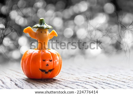 Halloween pumpkin with dark background - stock photo
