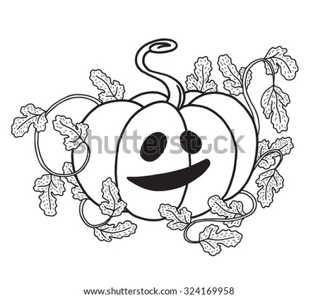 Halloween pumpkin with scary smile isolated on white, hand drawn graphic jack o lantern isolated on white. - stock photo