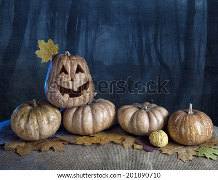 Halloween pumpkins at dark forest background - stock photo