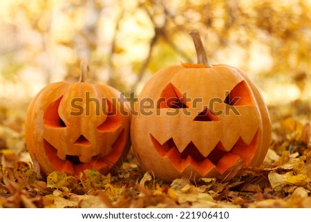 Halloween pumpkins in autumn forest - stock photo