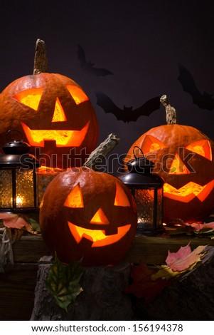 halloween pumpkins, near lanterns and  bats on dark background - stock photo