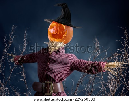 Halloween scarecrow with jack-o-lantern pumpkin head on dark blue background - stock photo