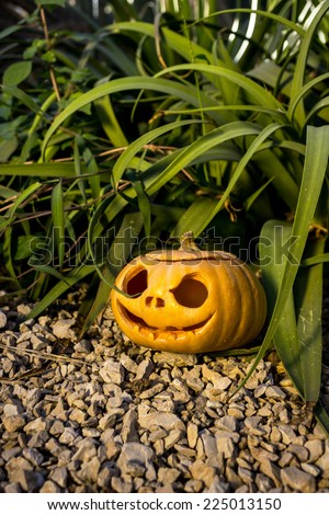 Halloween scary pumpkin jack-o-lantern with a smile in green grass thicket on the rock - stock photo