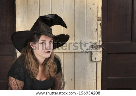 halloween witch - stock photo