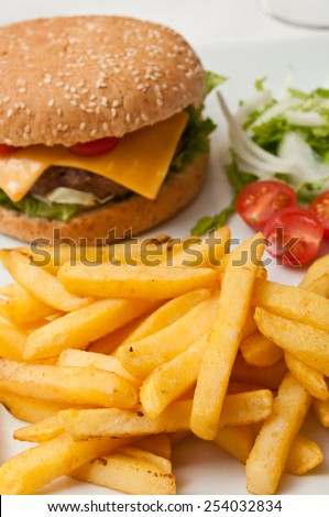 hamburger and french fries closeup