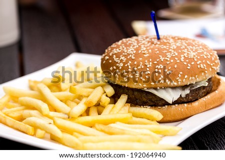 Hamburger and french fries on a white plate - stock photo