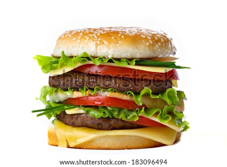 Hamburger isolated. Cheeseburger.