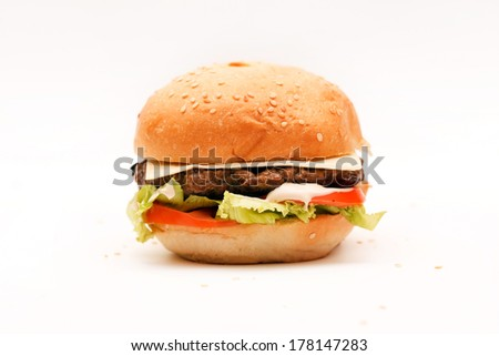 hamburger on the white