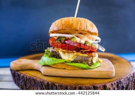 Hamburger with beef and fresh vegetables - stock photo