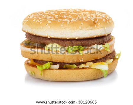Hamburger with cheese  and lettuce