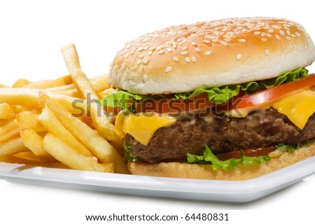 hamburger with fries on white background - stock photo
