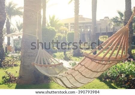 hammock between palm trees in the garden - stock photo