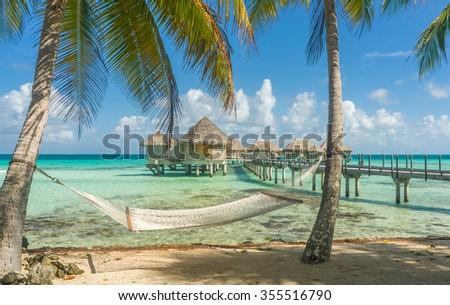 Hammock in a beach in Tikehau, Tahiti - stock photo