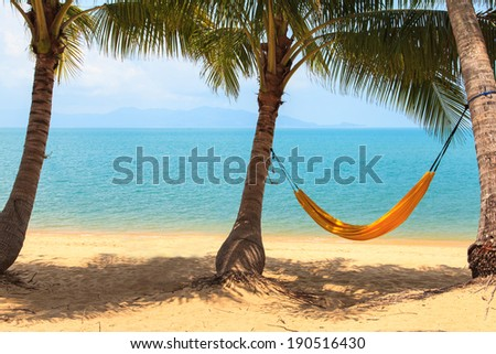 Hammock in the palm on the tropical beach - stock photo