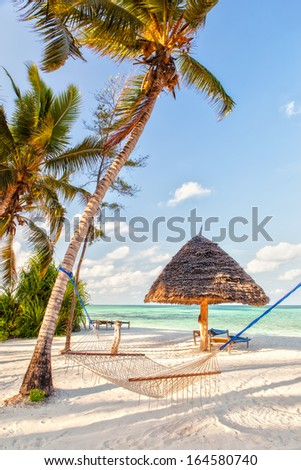 Hammock on the beach set between two trees with shadow on white sand at the evening, Zanzibar, Tanzania