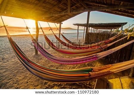 Hammocks on a beach at sunset. - stock photo