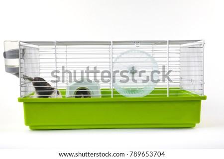 Hamster cage background