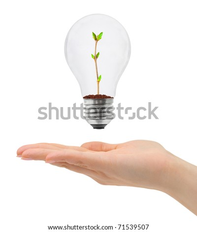 Hand and bulb with plant isolated on white background