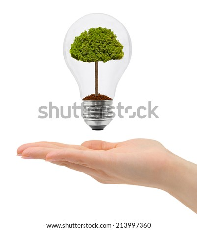Hand and bulb with tree isolated on white background