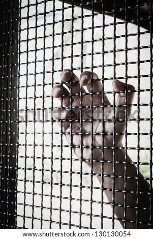 Hand and mesh cage for freedom - stock photo