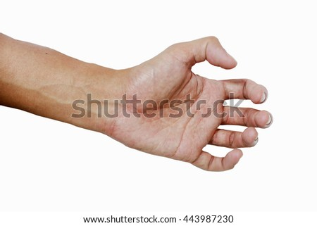 Hand and palm of asia color skin on the white background