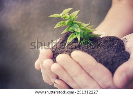 hand and plant