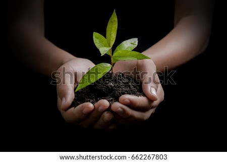 Hand and plant isolated on black background