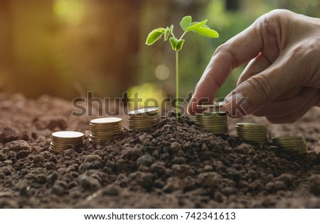 Hand and young green plant with stack coin on ground for growing business financial concept.
