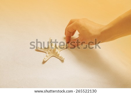 Hand collecting starfish on the beach. Summer holiday concept or maritime background. - stock photo